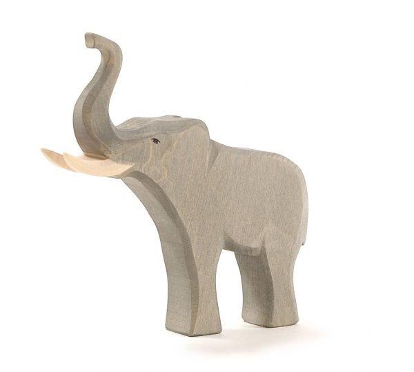 Der Elefantenbulle von Ostheimer