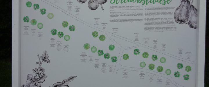 Info-Tafel für das Streuobstwiesenprojekt in Friedberg