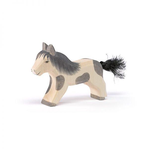 Shettland Pony, laufend